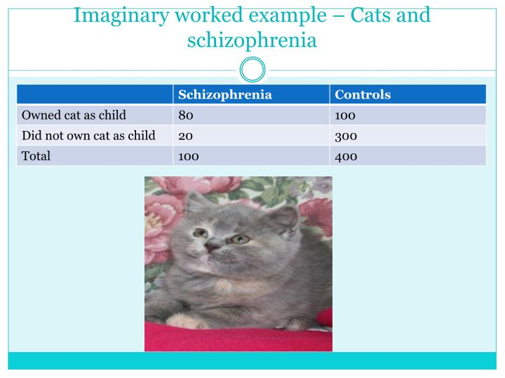 Imaginary worked example – Cats and schizophrenia