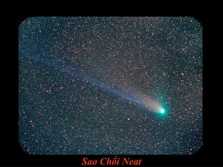 Sao Chổi Neat