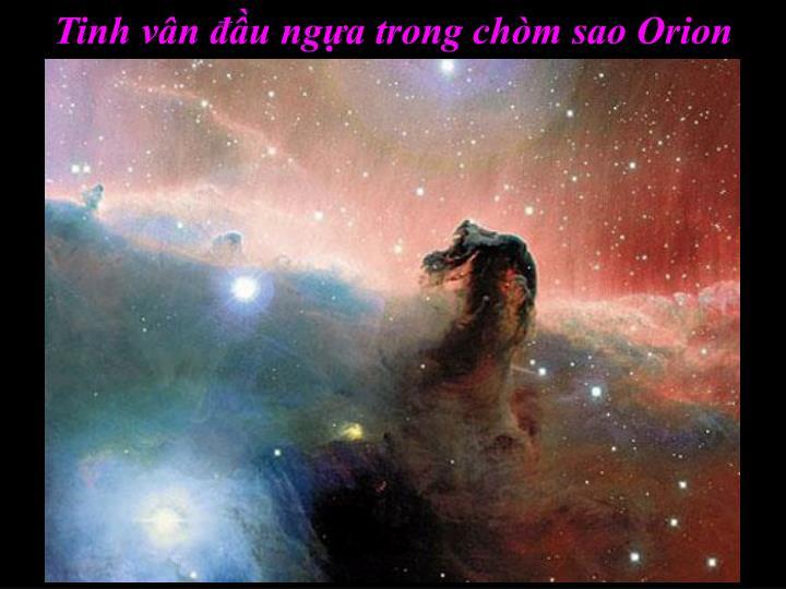 Tinh vân đầu ngựa trong chòm sao Orion