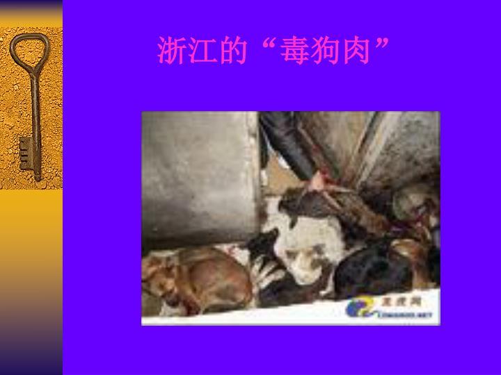 """浙江的""""毒狗肉"""""""