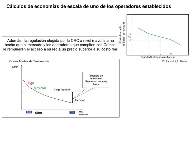 Cálculos de economías de escala de uno de los operadores establecidos