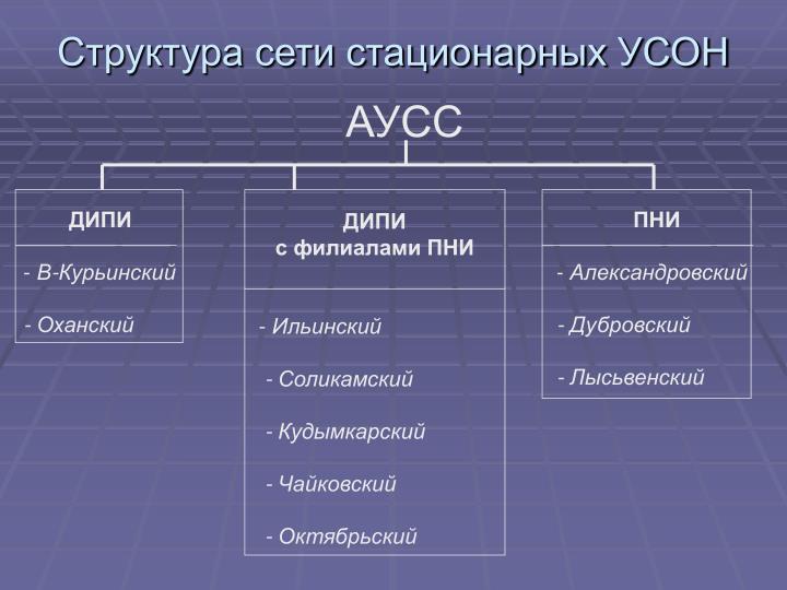 Структура сети стационарных УСОН
