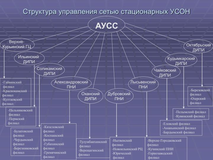 Структура управления сетью стационарных УСОН