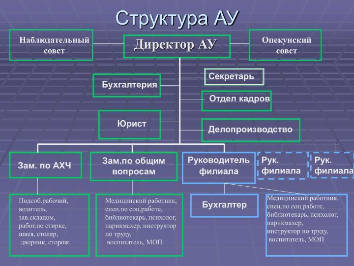 Структура АУ