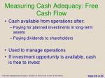measuring cash adequacy free cash flow