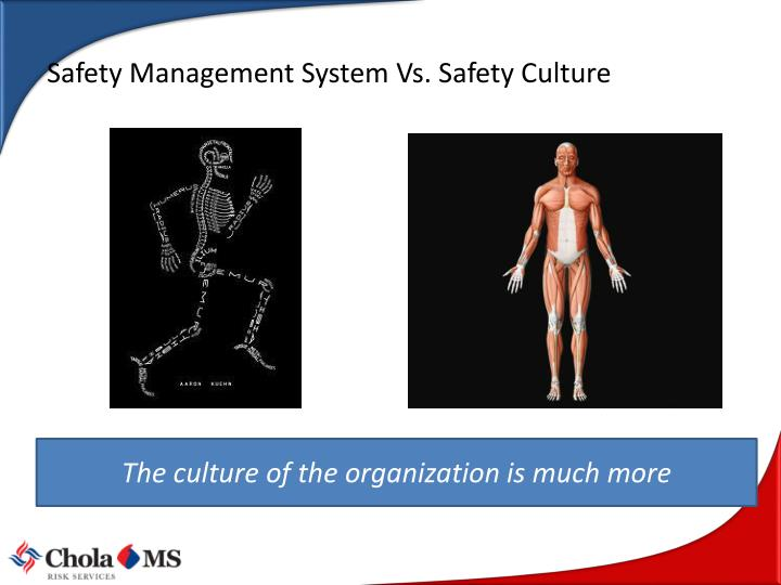 Safety Management System Vs. Safety Culture