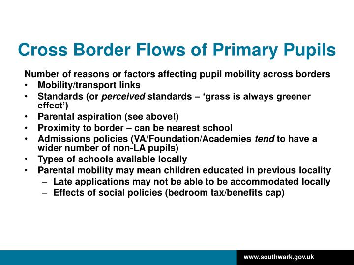 Cross Border Flows of Primary Pupils
