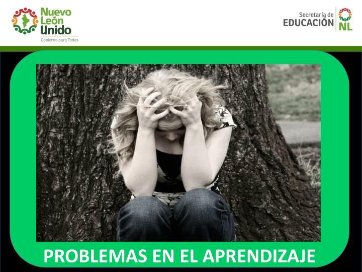 PROBLEMAS EN EL APRENDIZAJE