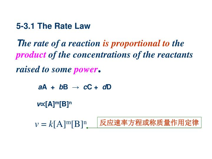 5-3.1 The Rate Law