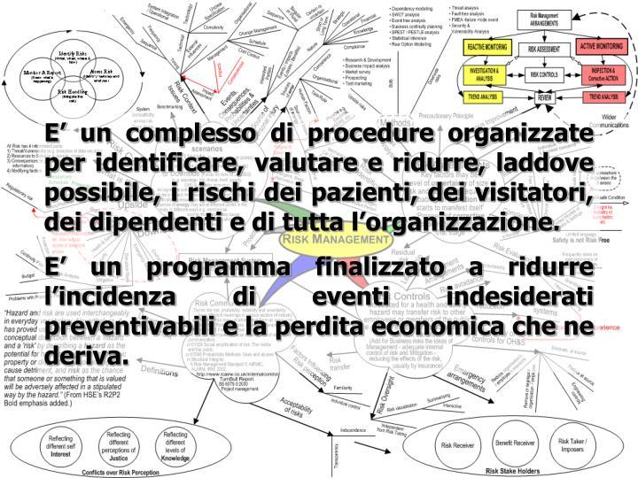E un complesso di procedure organizzate per identificare, valutare e ridurre, laddove possibile, i rischi dei pazienti, dei visitatori, dei dipendenti e di tutta lorganizzazione.