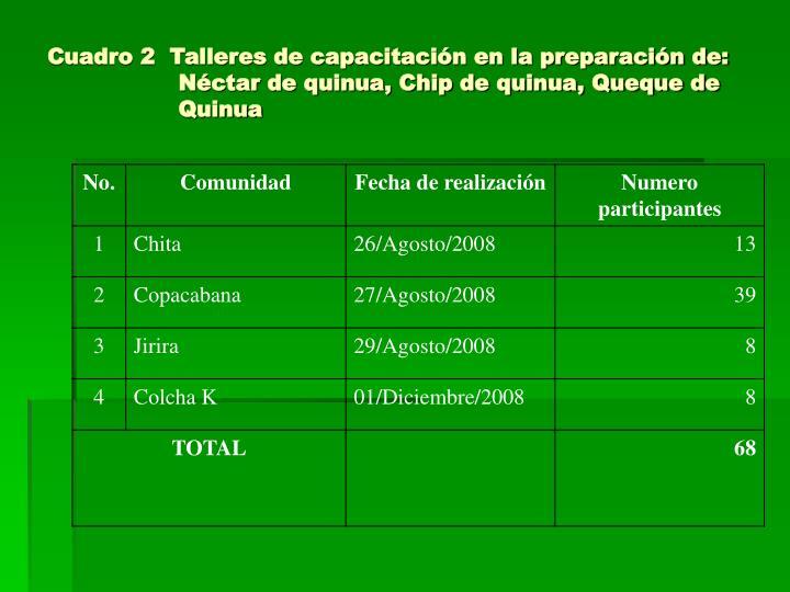 Cuadro 2  Talleres de capacitación en la preparación de: