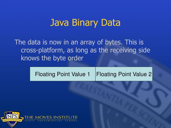 Java Binary Data