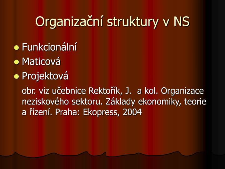 Organizační struktury v NS