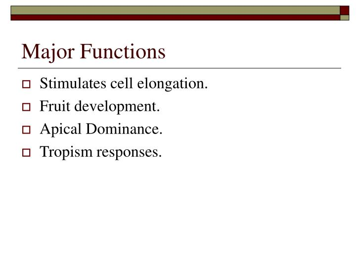 Major Functions