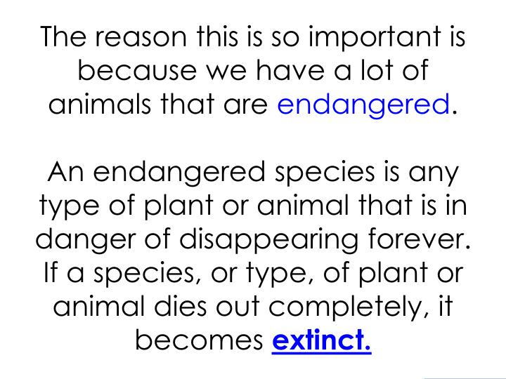 The reason this is so important is because we have a lot of animals that are