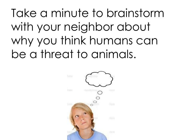 Take a minute to brainstorm with your neighbor about why you think humans can be a threat to animals.