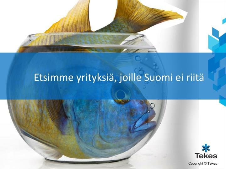 Etsimme yrityksiä, joille Suomi ei riitä