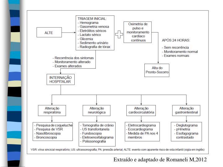 Extraído e adaptado de Romaneli M,2012