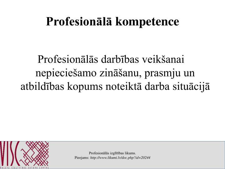 Profesionālā