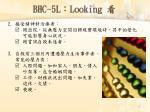 bhc 5l l ooking1