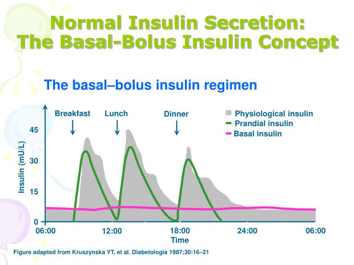 Normal Insulin Secretion: