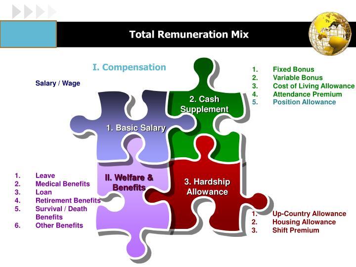Total Remuneration Mix