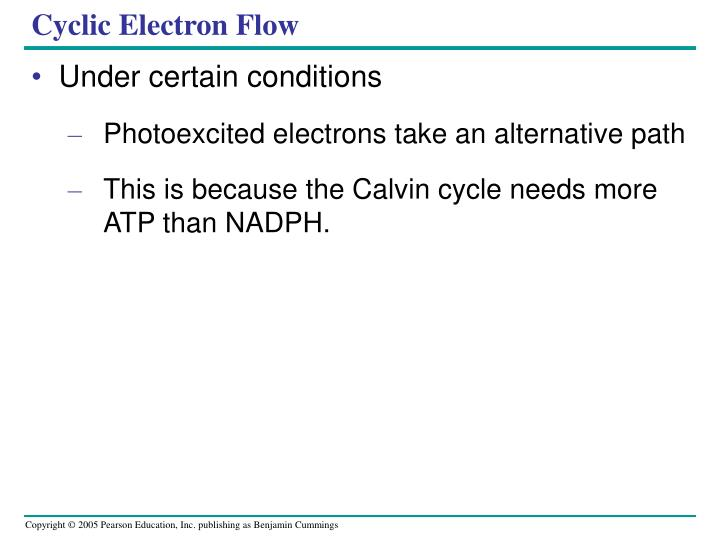 Cyclic Electron Flow