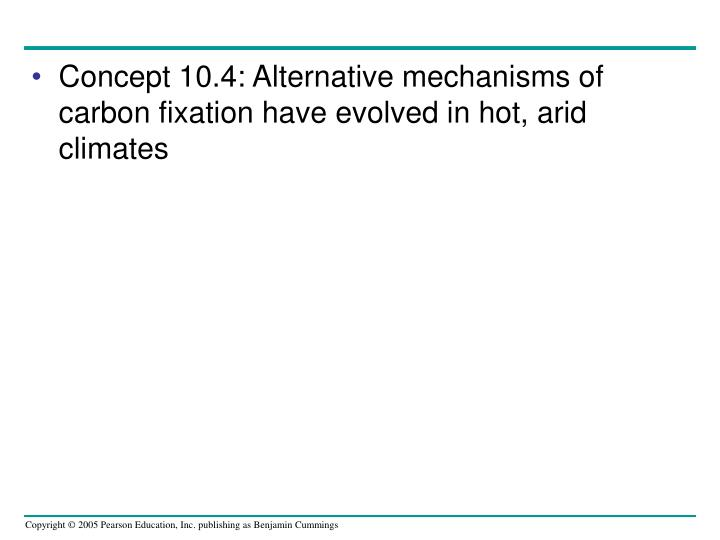 Concept 10.4: Alternative mechanisms of carbon fixation have evolved in hot, arid climates