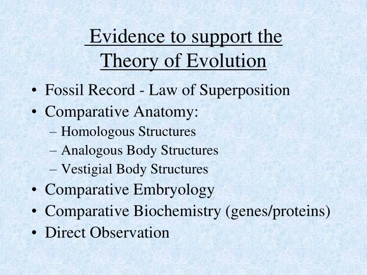 Evidence to support the theory of evolution
