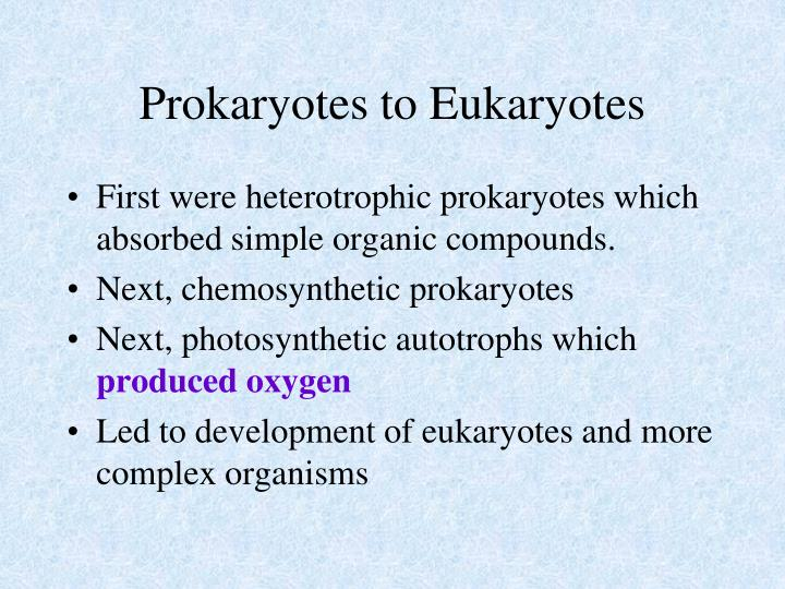 Prokaryotes to Eukaryotes