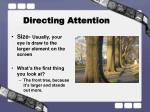 directing attention2