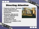 directing attention6