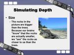 simulating depth1