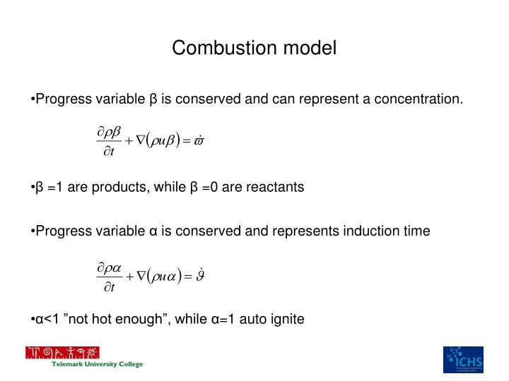 Combustion model