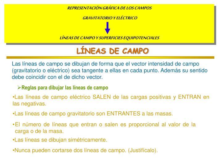 LÍNEAS DE CAMPO