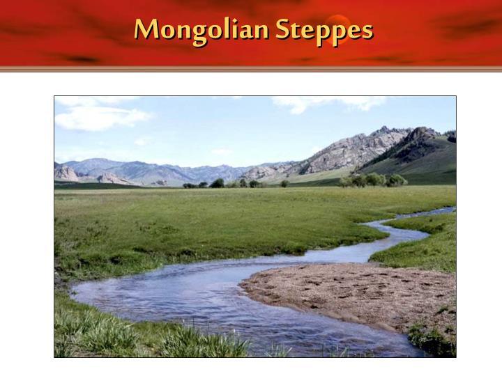 Mongolian Steppes