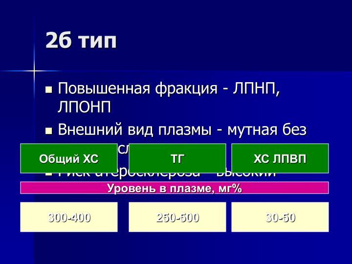 2б тип