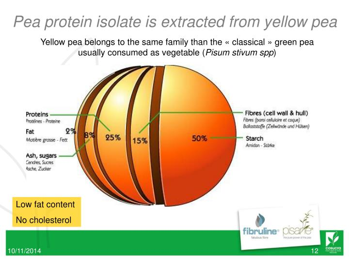 Pea protein isolate is extracted from yellow pea