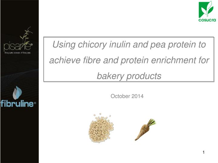 using chicory inulin and pea protein to achieve fibre and protein enrichment for bakery products