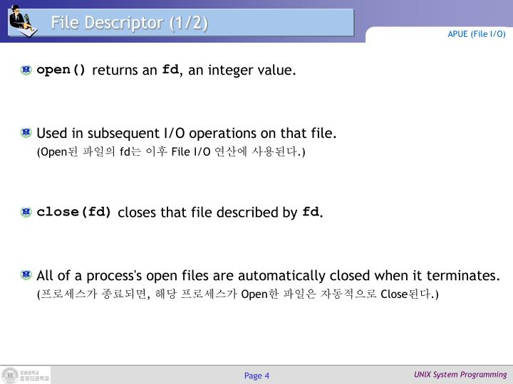 File Descriptor (1/2)