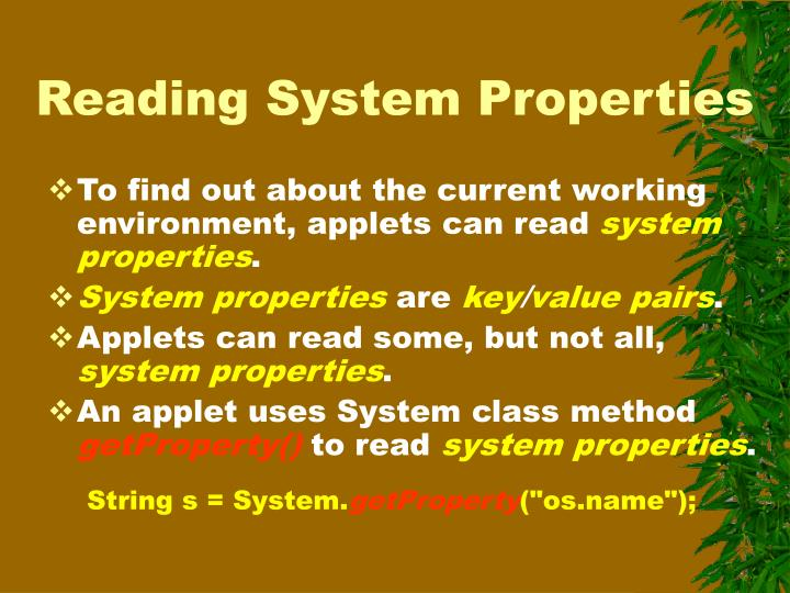 Reading System Properties