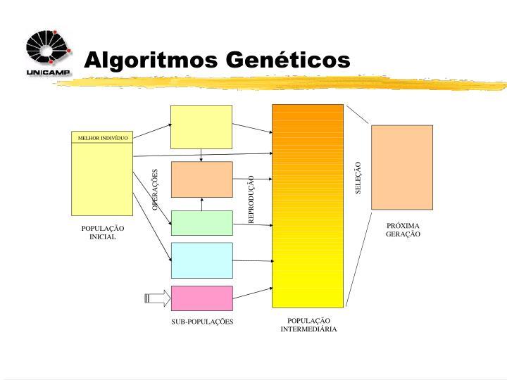 Algoritmos Genéticos
