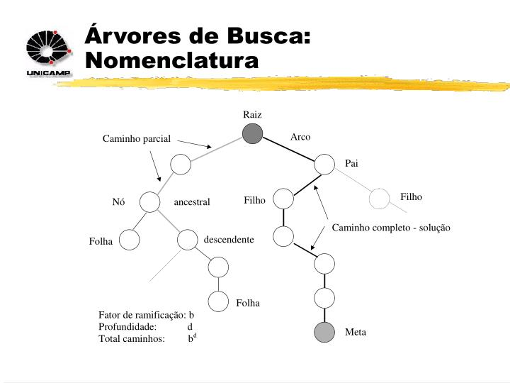 Árvores de Busca: Nomenclatura