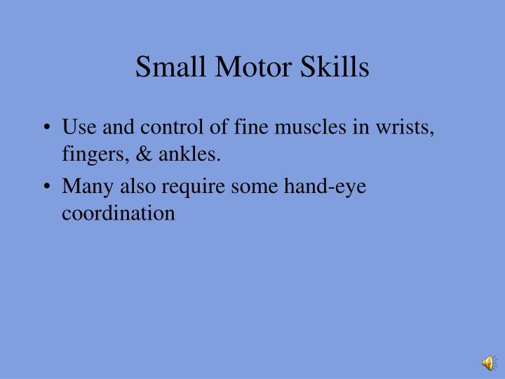 Small Motor Skills