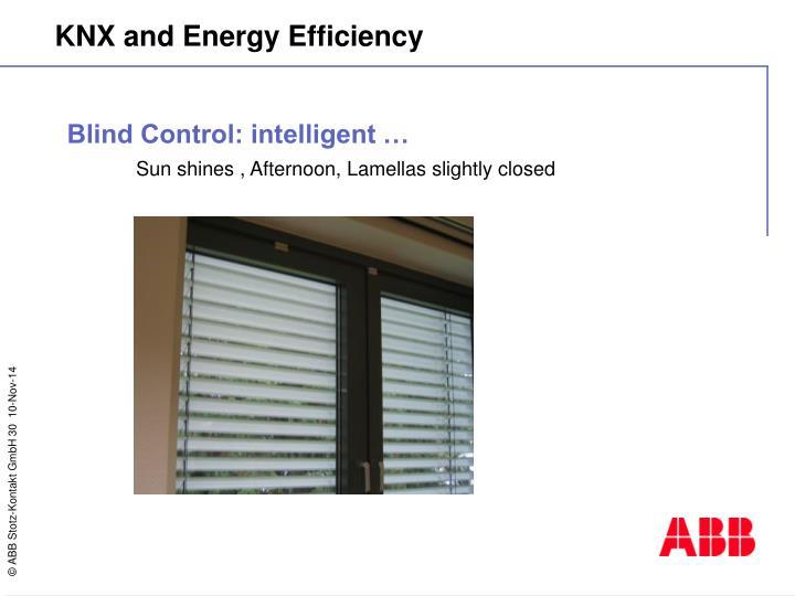 Blind Control: intelligent …