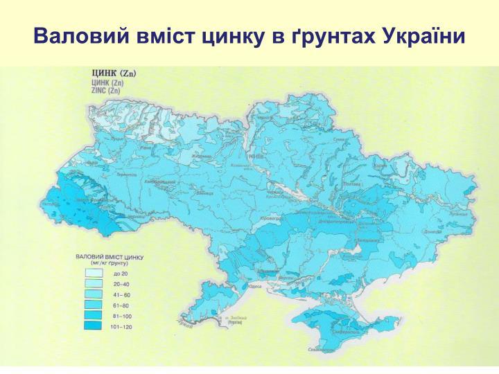 Валовий вміст цинку в ґрунтах України