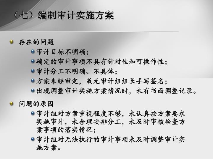 (七)编制审计实施方案