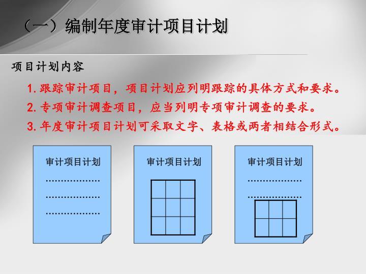 (一)编制年度审计项目计划