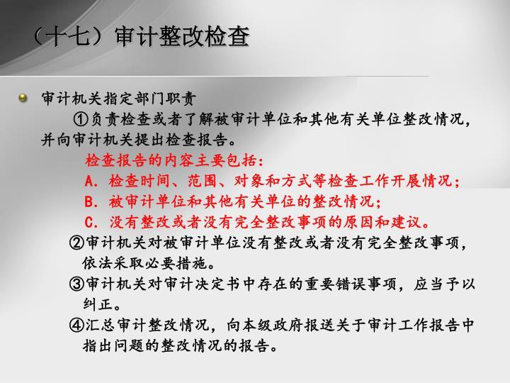 (十七)审计整改检查