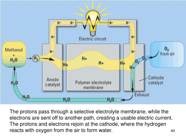 The protons pass through a selective electrolyte membrane, while the electrons are sent off to another path, creating a usable electric current. The protons and electrons rejoin at the cathode, where the hydrogen reacts with oxygen from the air to form water.